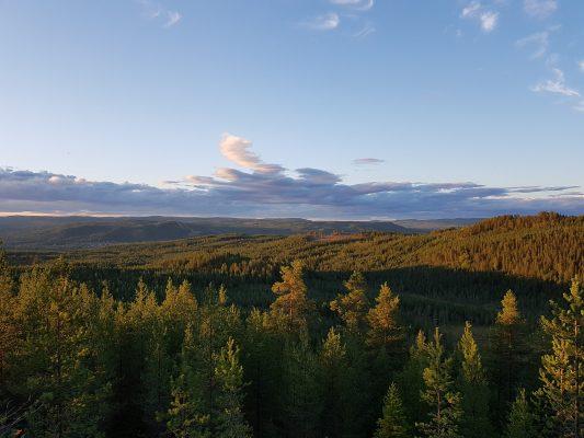 Utsikt ifrån Dåråberg i Älvdalen