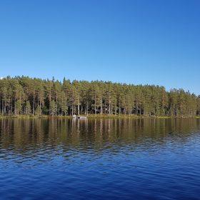 Rämmasjön i Älvdalen, här finns öring, röding, abborre och gädda