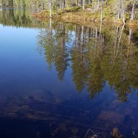 Fiska öring och röding i Digerbergstjärn i Älvdalen
