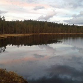 Fiske i Kråkbotjärn som ligger i Blyberg någon mil utanför Älvdalen