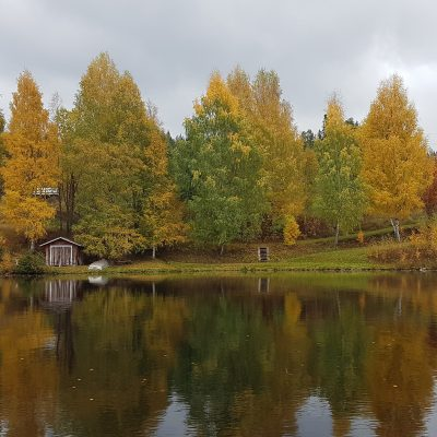 Väsadammen på hösten