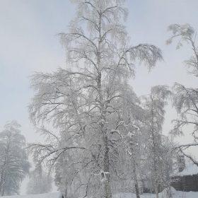 Vinter vid badplatsen i Rämma